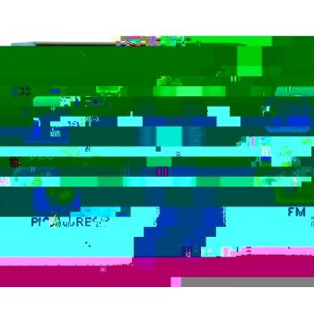 YEPO ECLIPSE MP4 4GB